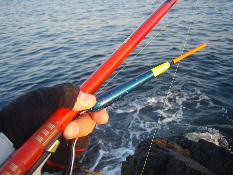 新しい釣研のT-HOPE
